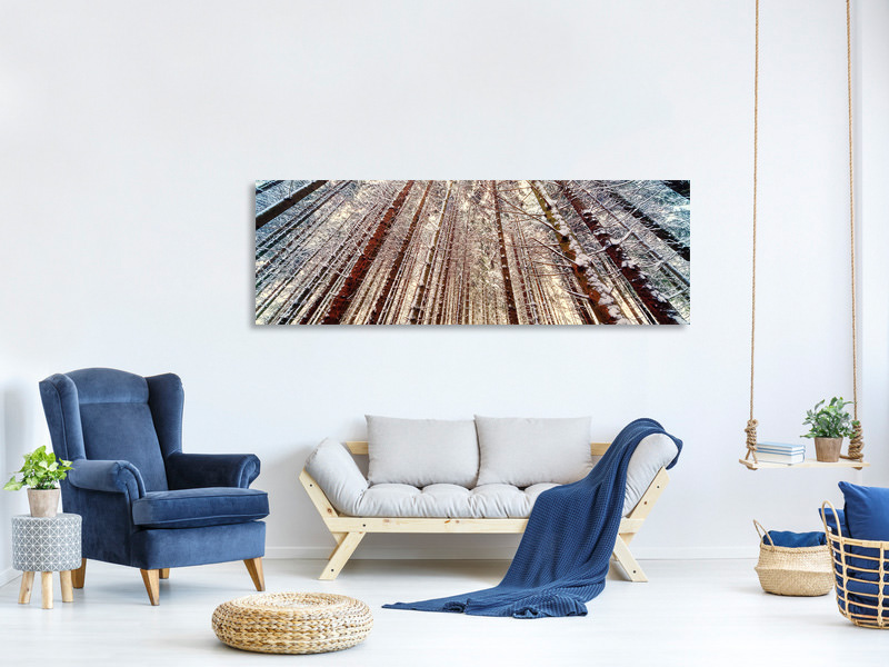 Panoramic Canvas Print Trees in the snow