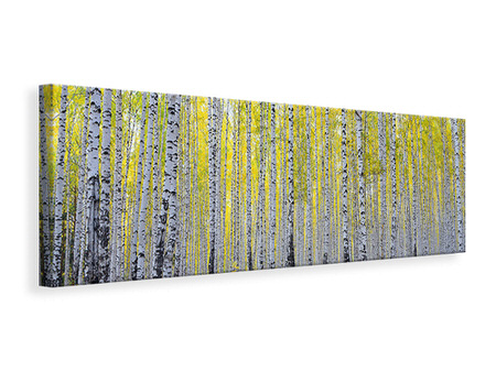 Canvasfoto panaoramaformaat Autumnal Birch Forest