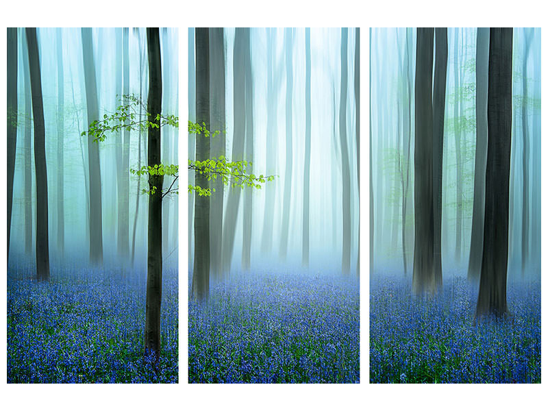 Canvasfoto 3-delig The Blue Forest