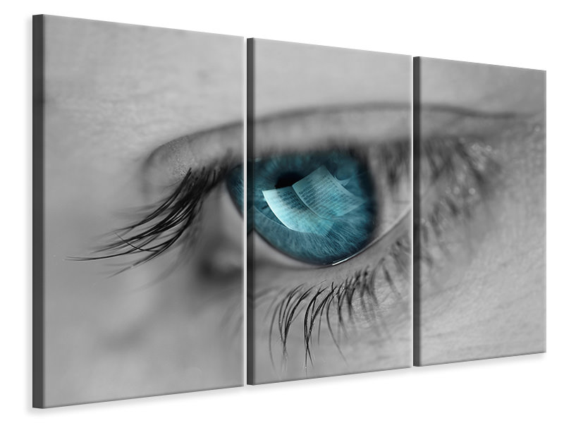 3 Piece Canvas Print Music In Her Eyes