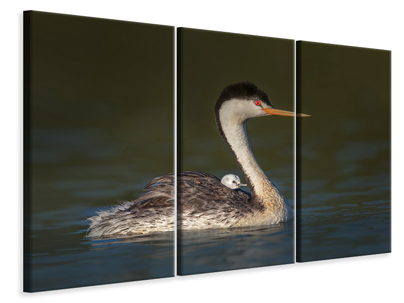 3 Piece Canvas Print Front Seat View