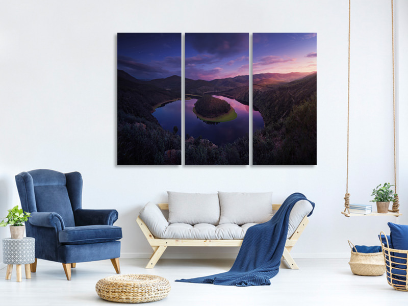 3 Piece Canvas Print U