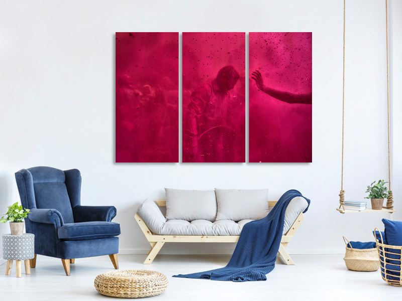 3 Piece Canvas Print Colorful Life