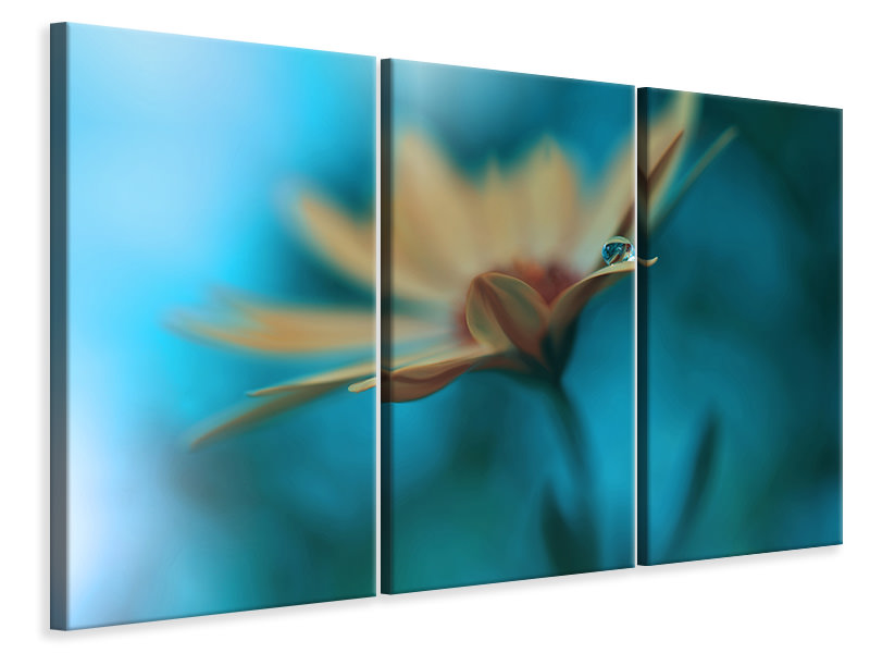 3 Piece Canvas Print Memories Of Sea