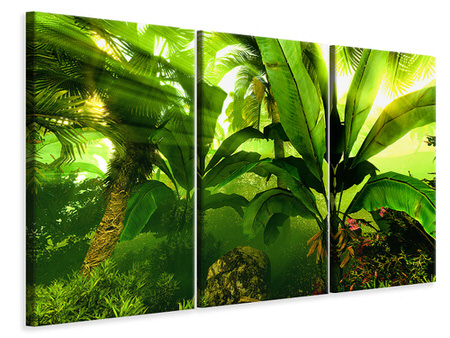 3 Piece Canvas Print Sunrise In The Rainforest
