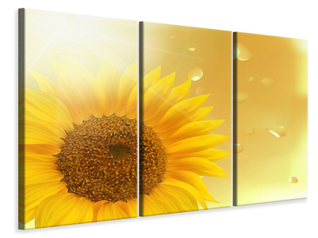 3 Piece Canvas Print Sunflower in Morning dew