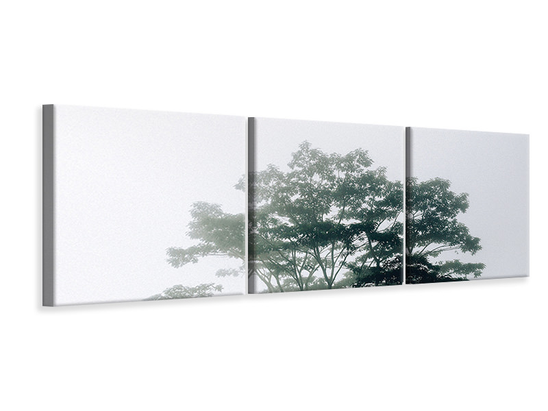 Panoramic 3 Piece Canvas Print Timor-Leste
