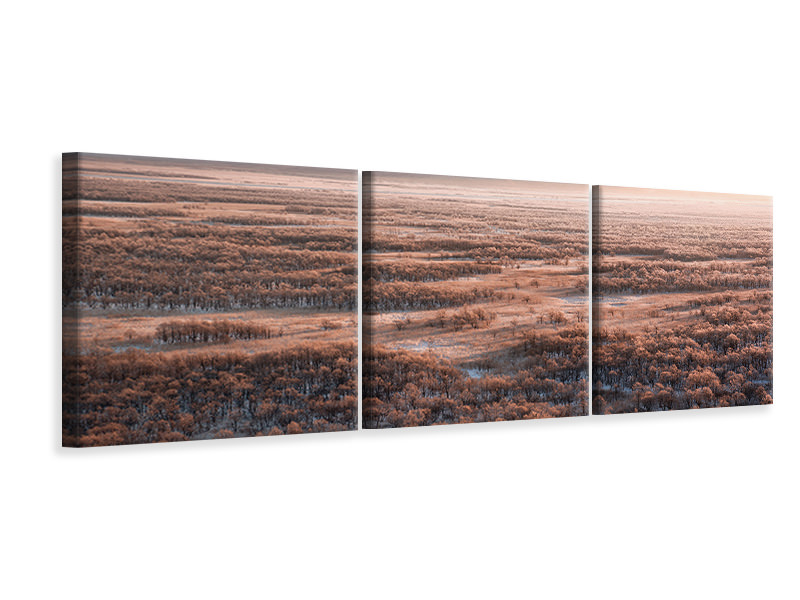 Panoramic Canvasfoto 3-delig Dawn