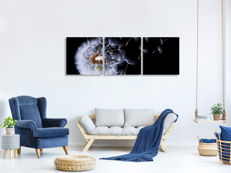 Panoramic 3 Piece Canvas Print Dandelion Blowing