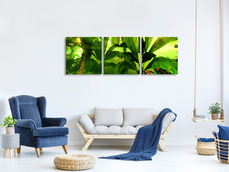 Panoramic 3 Piece Canvas Print Sunrise In The Rainforest