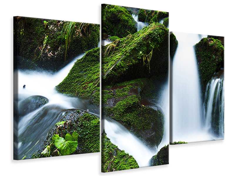 Canvasfoto 3-delig modern Wild waterfall