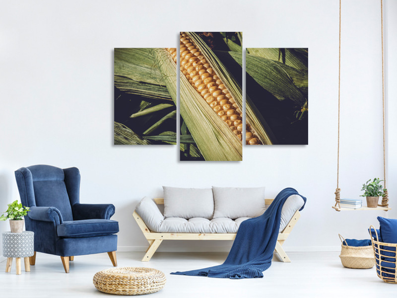 Modern 3 Piece Canvas Print Fresh sweetcorn