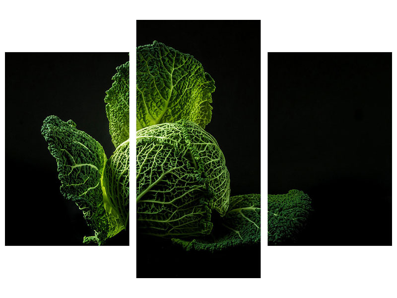 Modern 3 Piece Canvas Print The cabbage