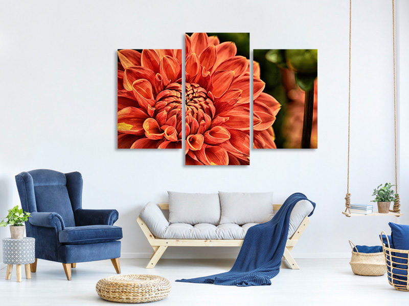 Modern 3 Piece Canvas Print Painting of a dahlia