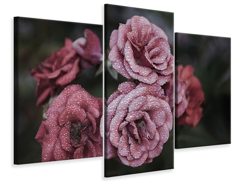Modern 3 Piece Canvas Print Romantic roses