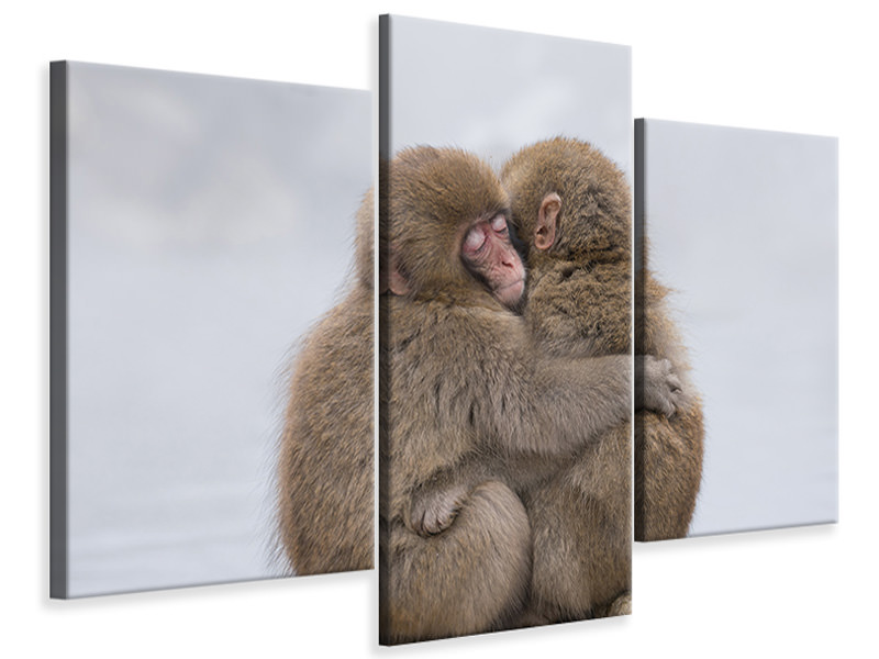 Modern 3 Piece Canvas Print Forever Friends
