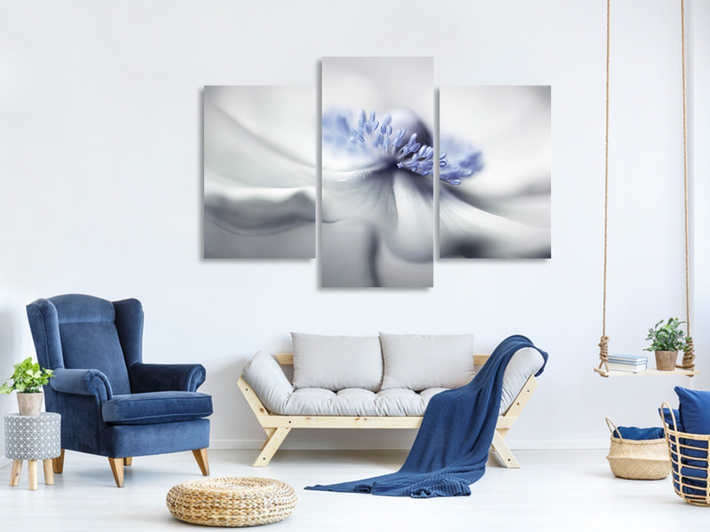 Modern 3 Piece Canvas Print Anemone Spirit
