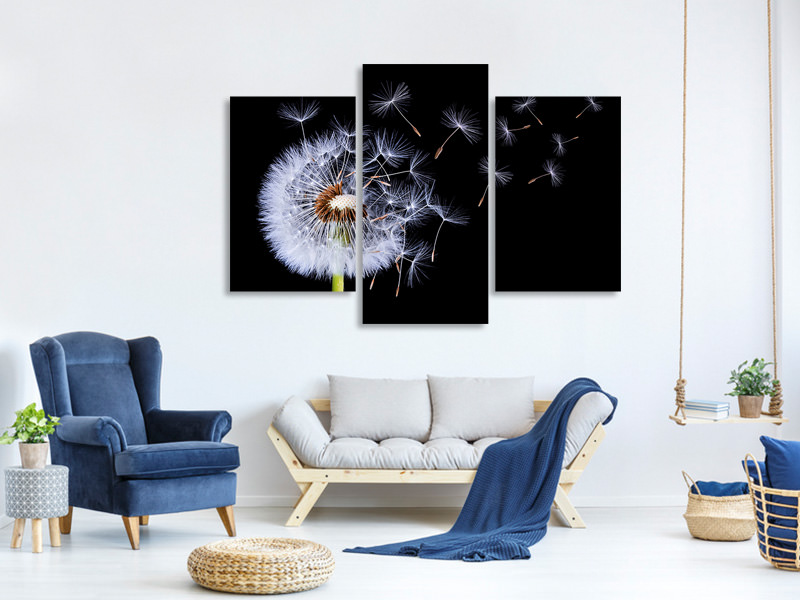 Canvasfoto 3-delig modern Dandelion Blowing