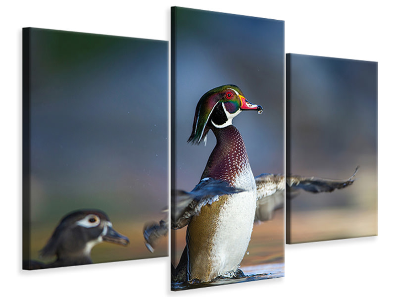Modern 3 Piece Canvas Print Showing Off