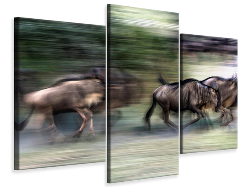 Modern 3 Piece Canvas Print Great Migration