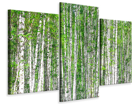 Canvasfoto 3-delig modern The Birch Forest