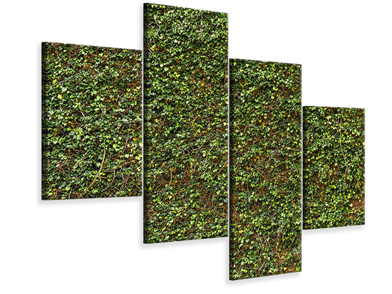 Canvasfoto 4-delig modern Green Ivy Leaves Wall