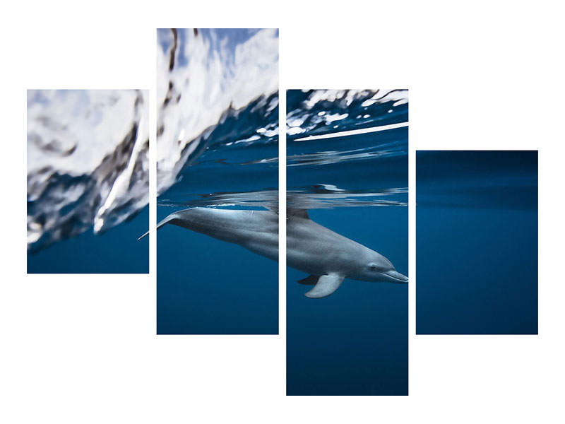 Canvasfoto 4-delig modern Bottlenose Dolphin / Turciops Aduncus