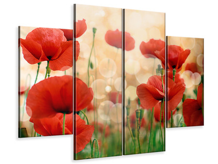 Canvasfoto 4-delig The Poppy