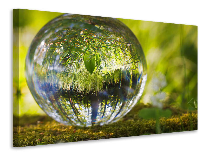 Canvasfoto Nature ball