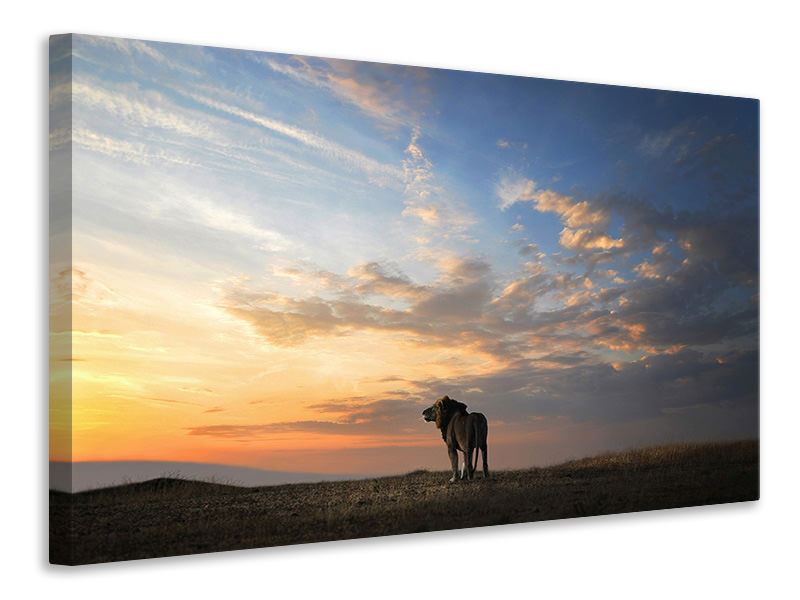 Canvas print End Of The Day