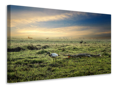 Canvas print World Without Humans