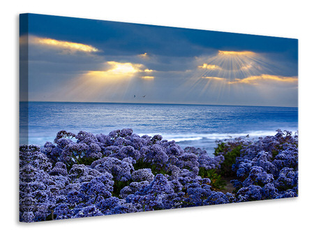 Canvas print Lavender And Sea