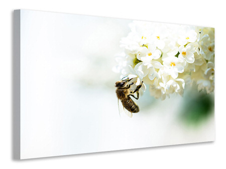 Canvas print The Bumblebee And The Flower