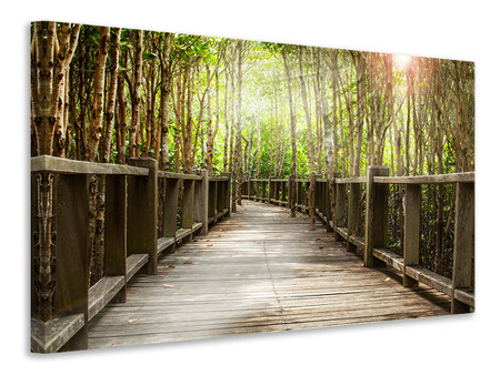 Canvas print Wooden Bridge