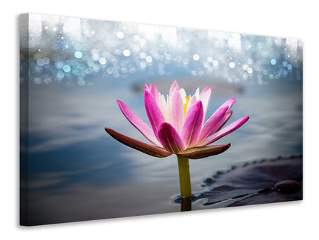 Canvas print Lotus In The Morning Dew