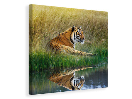Canvas print The Tiger