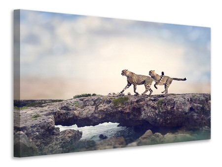 Canvas print Two Cheetahs