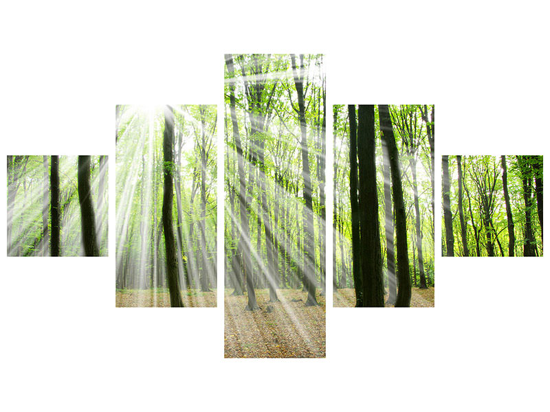 5 Piece Canvas Print Magic Light In The Trees