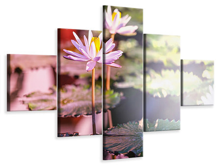 5 Piece Canvas Print Lilies In Pond